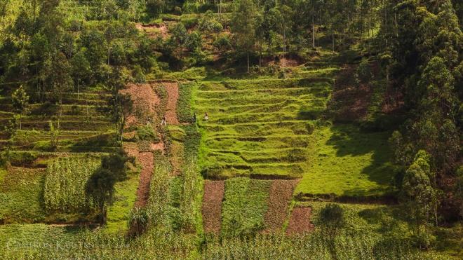 Day10_RwandaVirunga-25-Edit