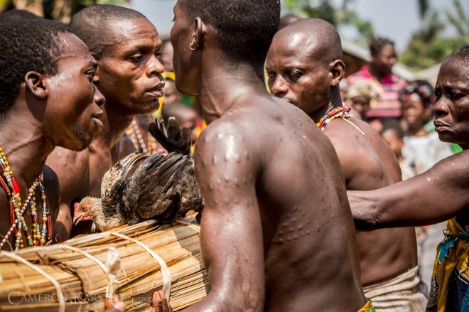 Day16_Houegbo-341