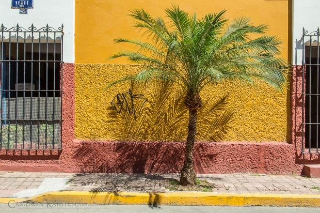 2015_Mazatlan-2461