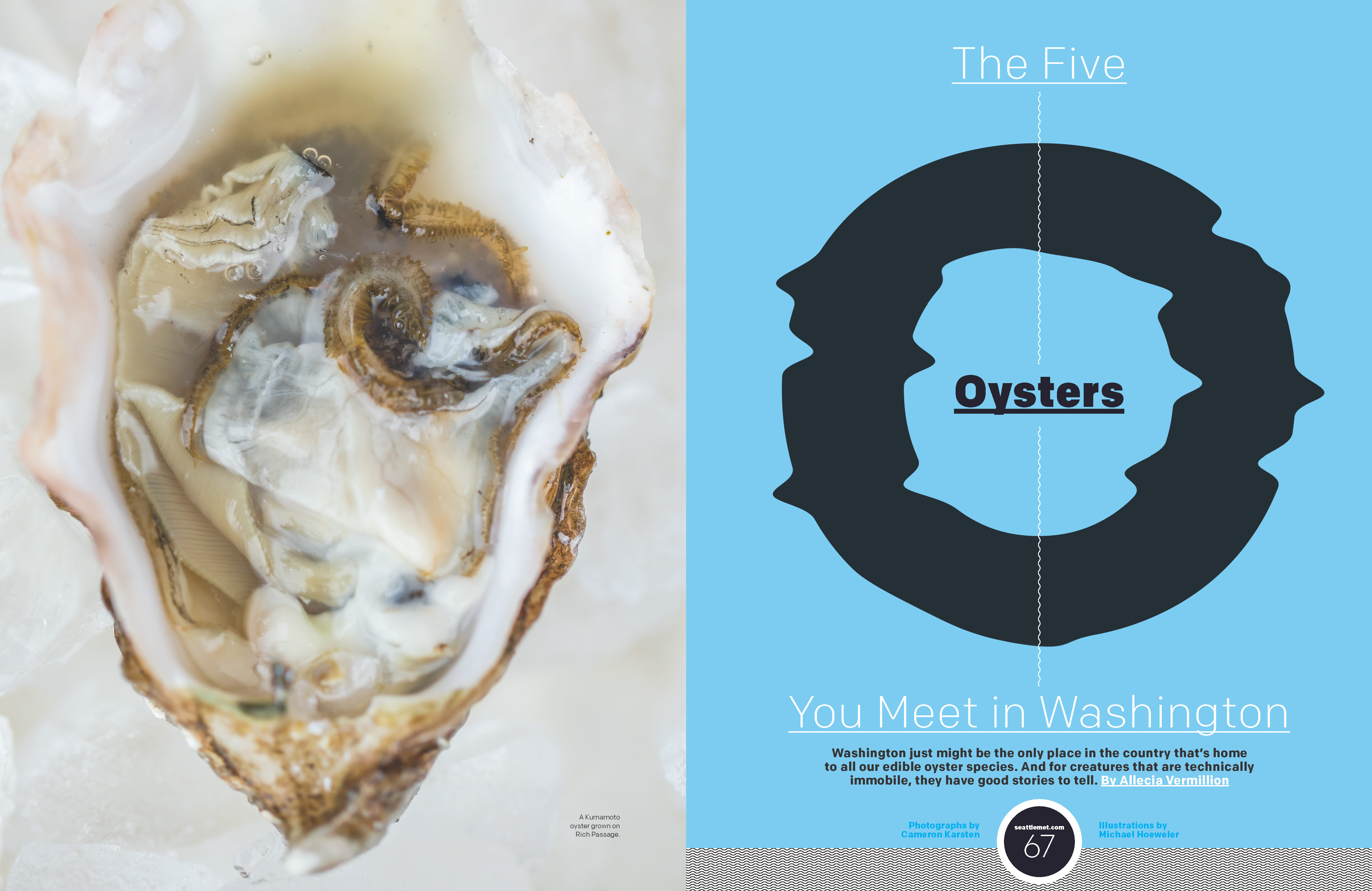 0316_66-73_Oyster_Page_1