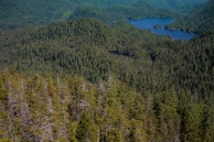 RdM of Ketchikan, AK offers helicopter, zodiac and seaplane tours in the surrounding wilderness