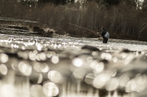 © Cameron Karsten Photography Patagonia flyfishing Ambassador Dylan Tomine throwing flies at the Olympic Peninsula steelhead run in Western Washington