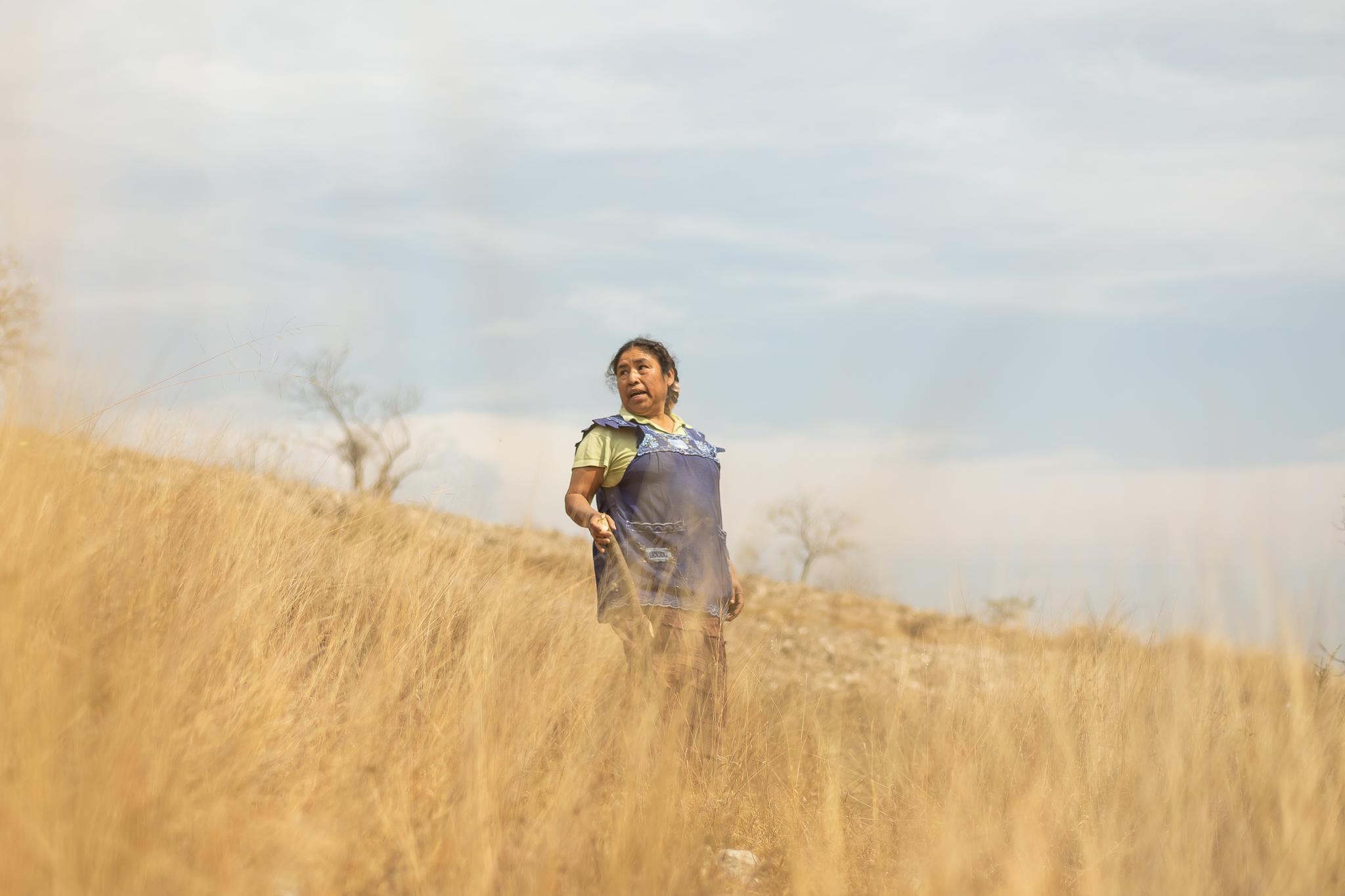 © Cameron Karsten Photography in Oaxaca, Mexico